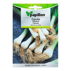 Semillas Cebolla Blanca (4 gramos)